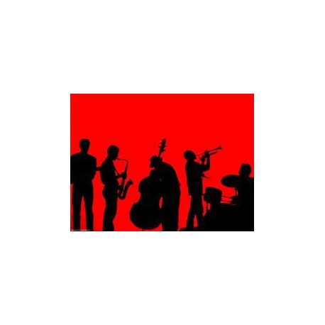 Jazz & Storband Set + ACE 210 + 2 Mikr