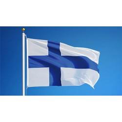UUSIA SUOMALAISTA HITTEJÄ USB Licensierat (Finska & Engelska hits)