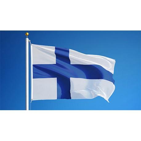 USB Licensierat (Finska & Engelska hits)